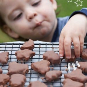 Chocolate Cookies – Refined Sugar Free, Gluten Free, Egg Free