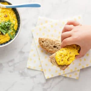 Baby Friendly Curried Hummus