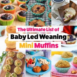 Ultimate List of Baby Led Weaning Mini Muffins