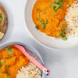 Baby Friendly Healthy Chicken Korma with a vegan option