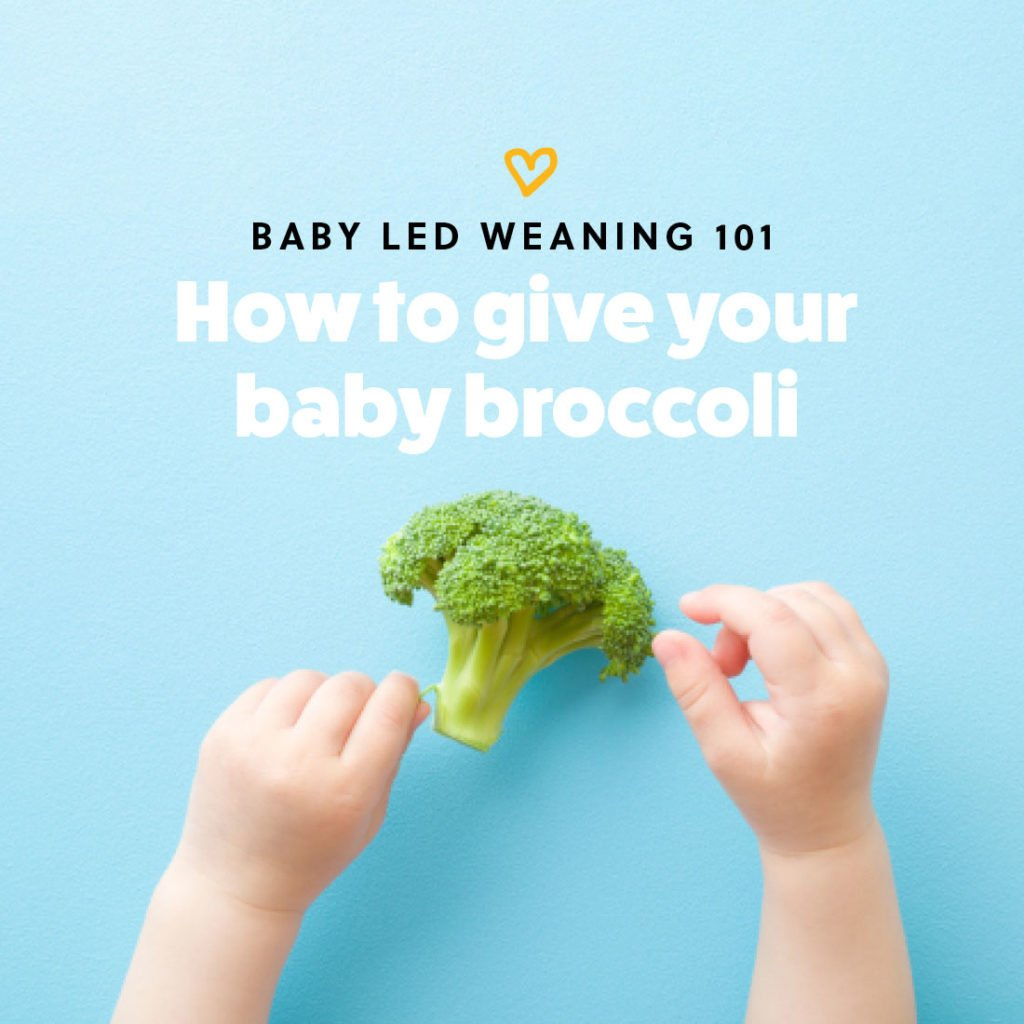 How to give your baby broccoli as a first food for baby led weaning