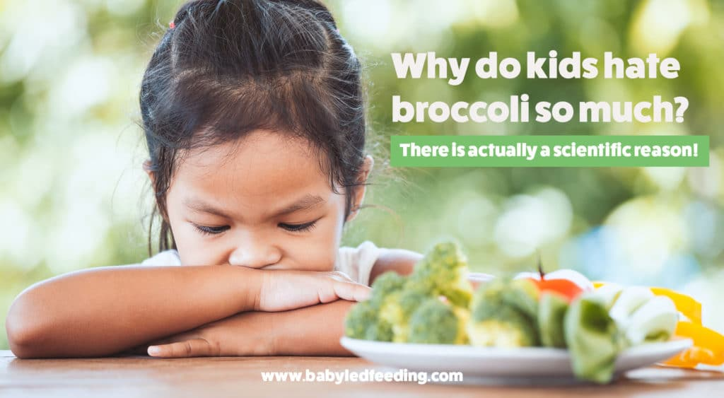 Why do kids hate broccoli so much? There is an actual scientific reason!