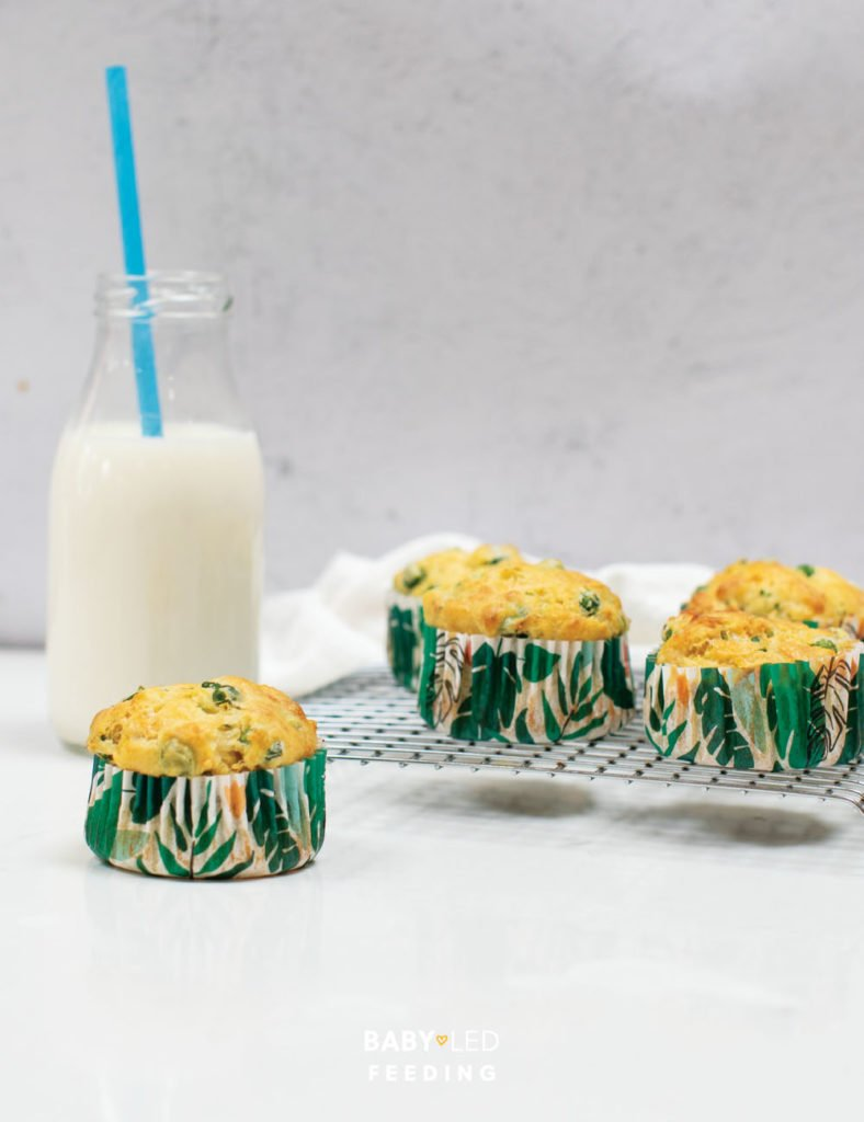 Baby Led weaning Vegetable Savory Muffins.